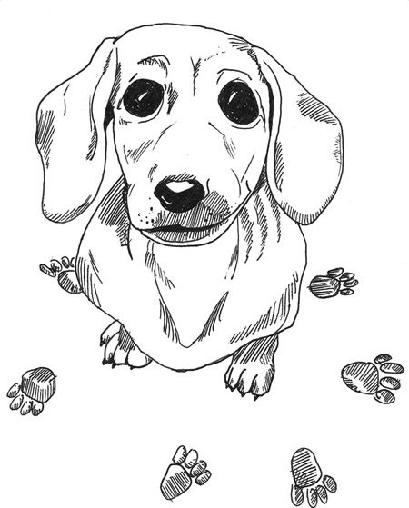 450x559 Dachshund Printable Coloring Pages Doxie Heaven