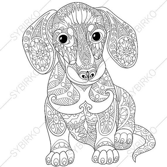 570x570 Dachshund Sausage Dog Coloring Page. Adult By Coloringpageexpress