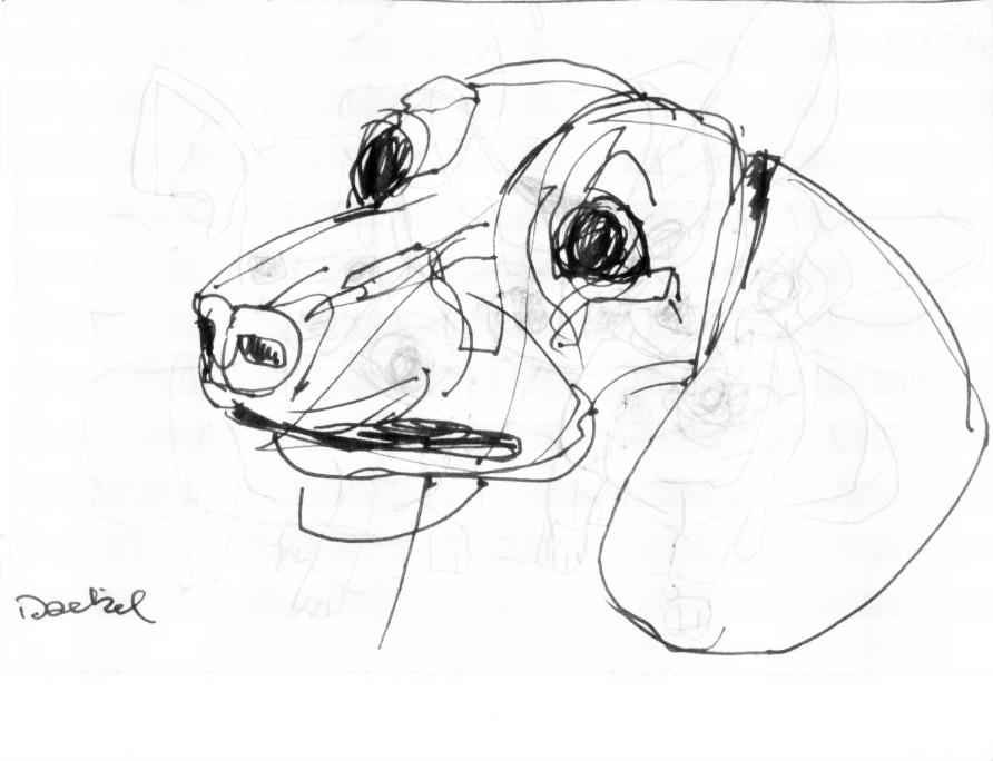 892x684 Dackel, Sausage Dog Dackel, Sausage Dog, Federstift, 2010