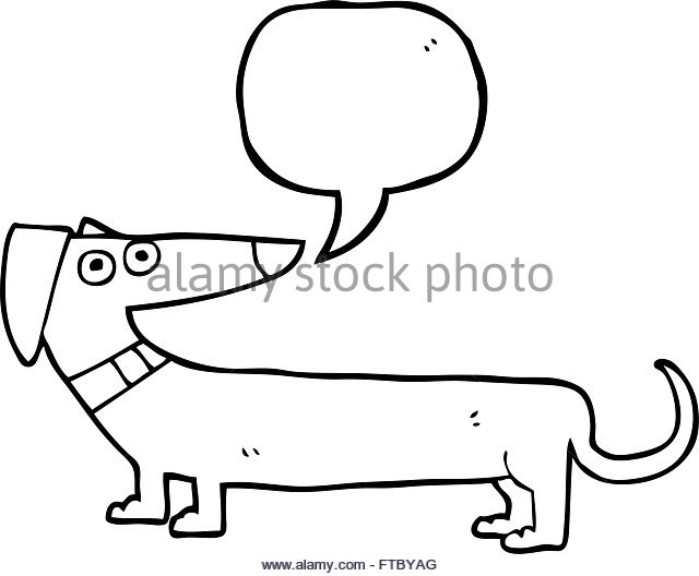 640x528 Funny Sausage Dog Black And White Stock Photos Amp Images