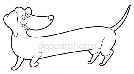 450x247 Cute Cartoon Long Dachshund Stock Vector Annasuchkova