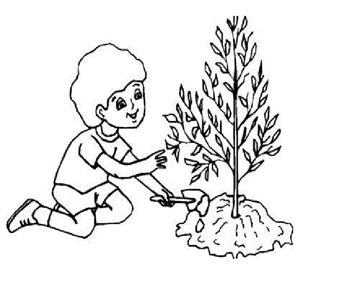 679x574 Coloring Pages Of Plant Trees Save Earth Coloring Pages