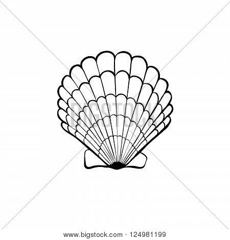 450x470 Hand Drawn Sea Shell. Scallop Vector Amp Photo Bigstock