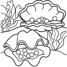 230x230 Strong Seashell Coloring Pages A Lovely Zigzag Scallop Drawing