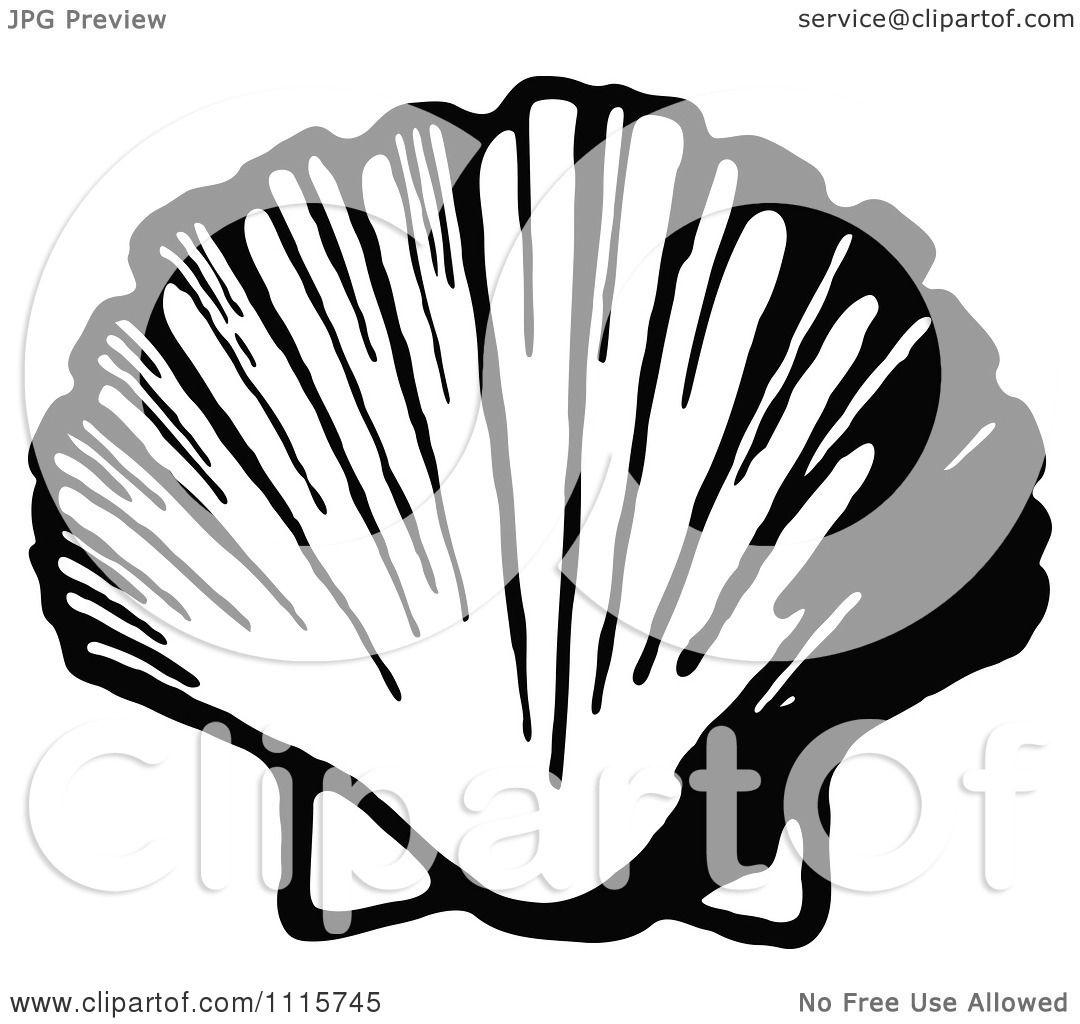 1080x1024 Clipart Retro Vintage Black And White Scallop Shell