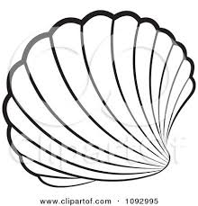 220x229 Image Result For Scallop Shells Illustrations Inspiration