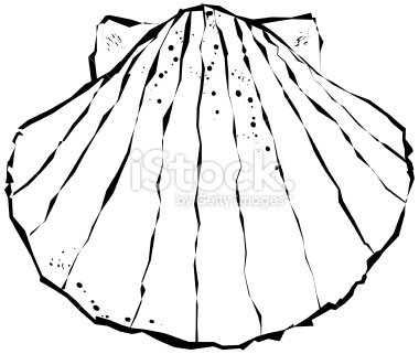 380x321 Whimscial Scallop Shell Scallop Shells, Tattoo And Tatoos