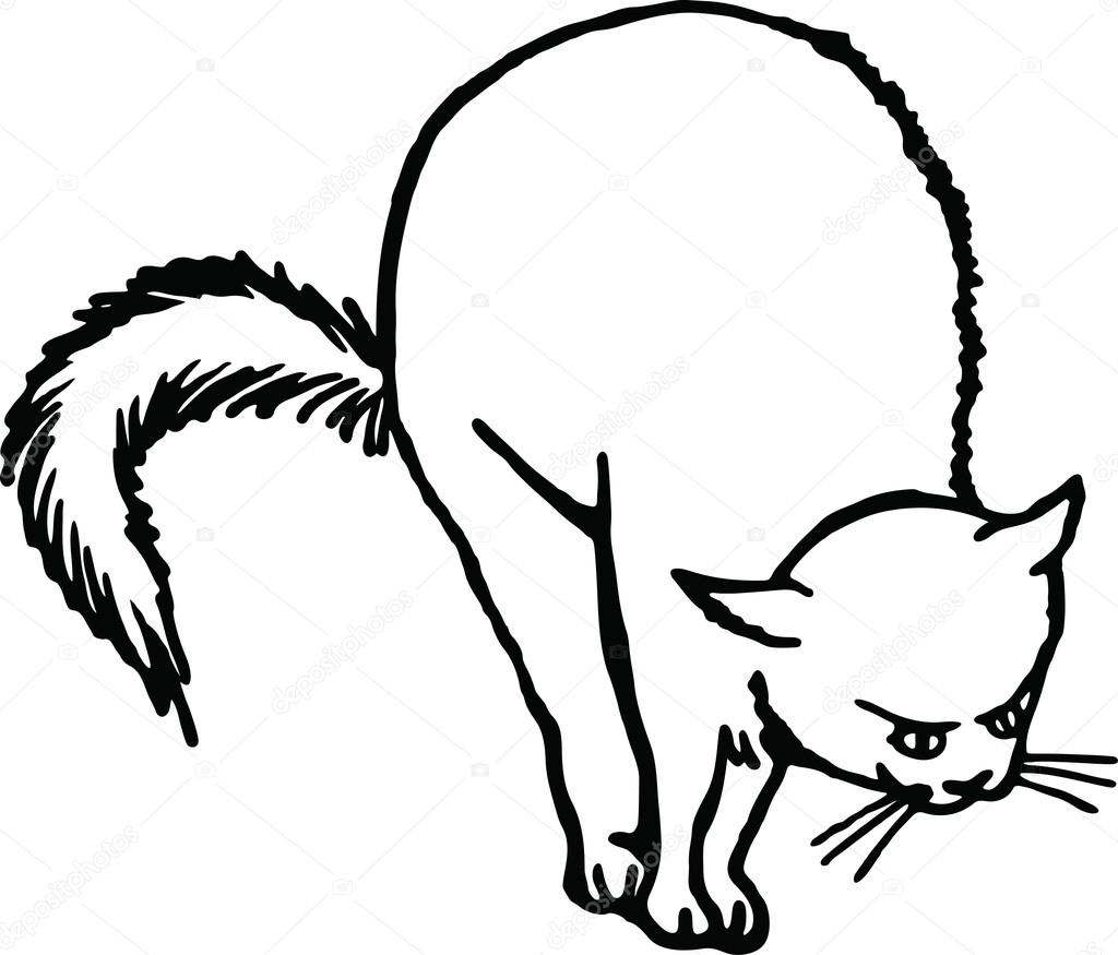 1024x875 Drawing Of A Scared Cat Stock Vector Prawny