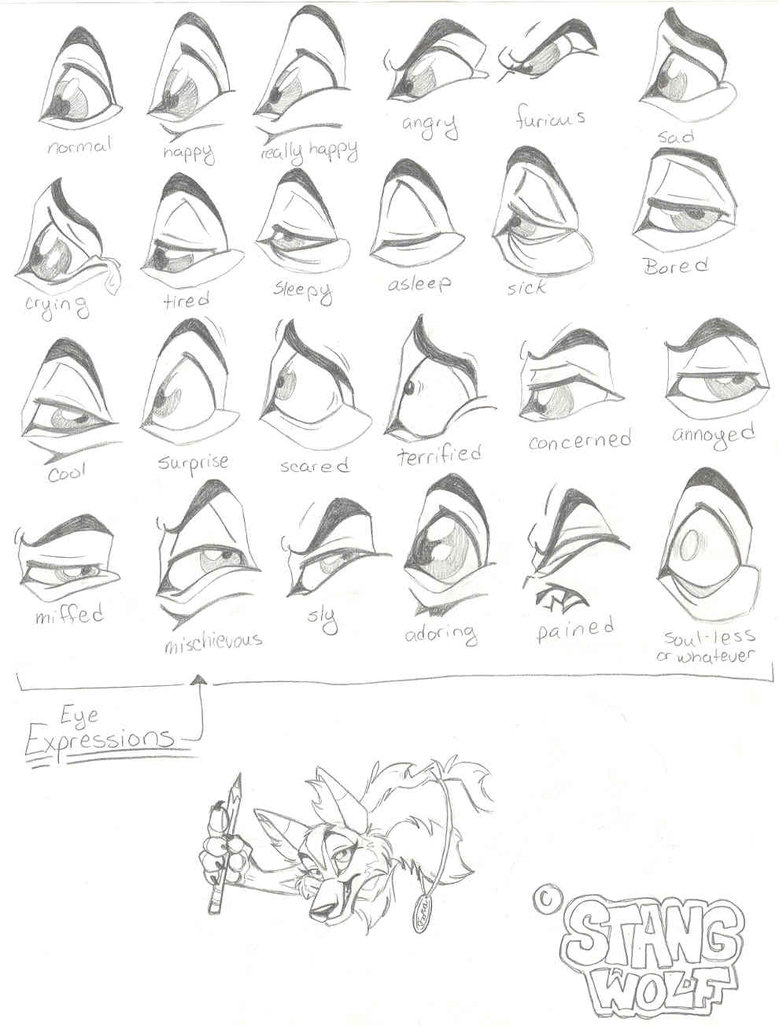 779x1026 Eye Expressions By Stangwolf