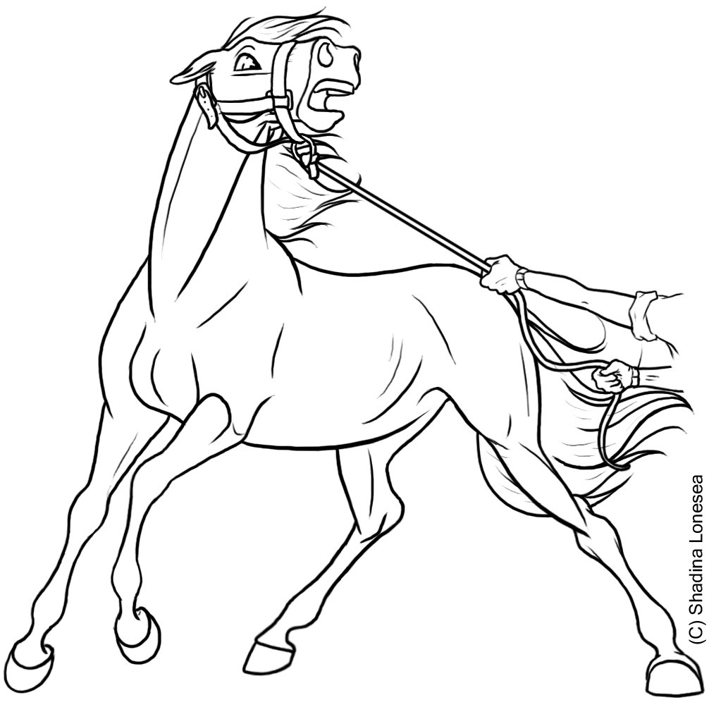 1006x1003 Spooked Horse