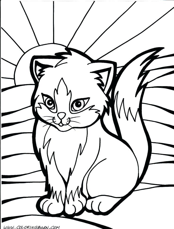 736x972 Coloring Cat Pictures Free Printable Cat Coloring Page For Kids