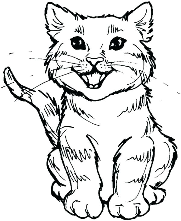 600x731 Halloween Cat Coloring Page Cat Coloring Page Kitty Cat Coloring