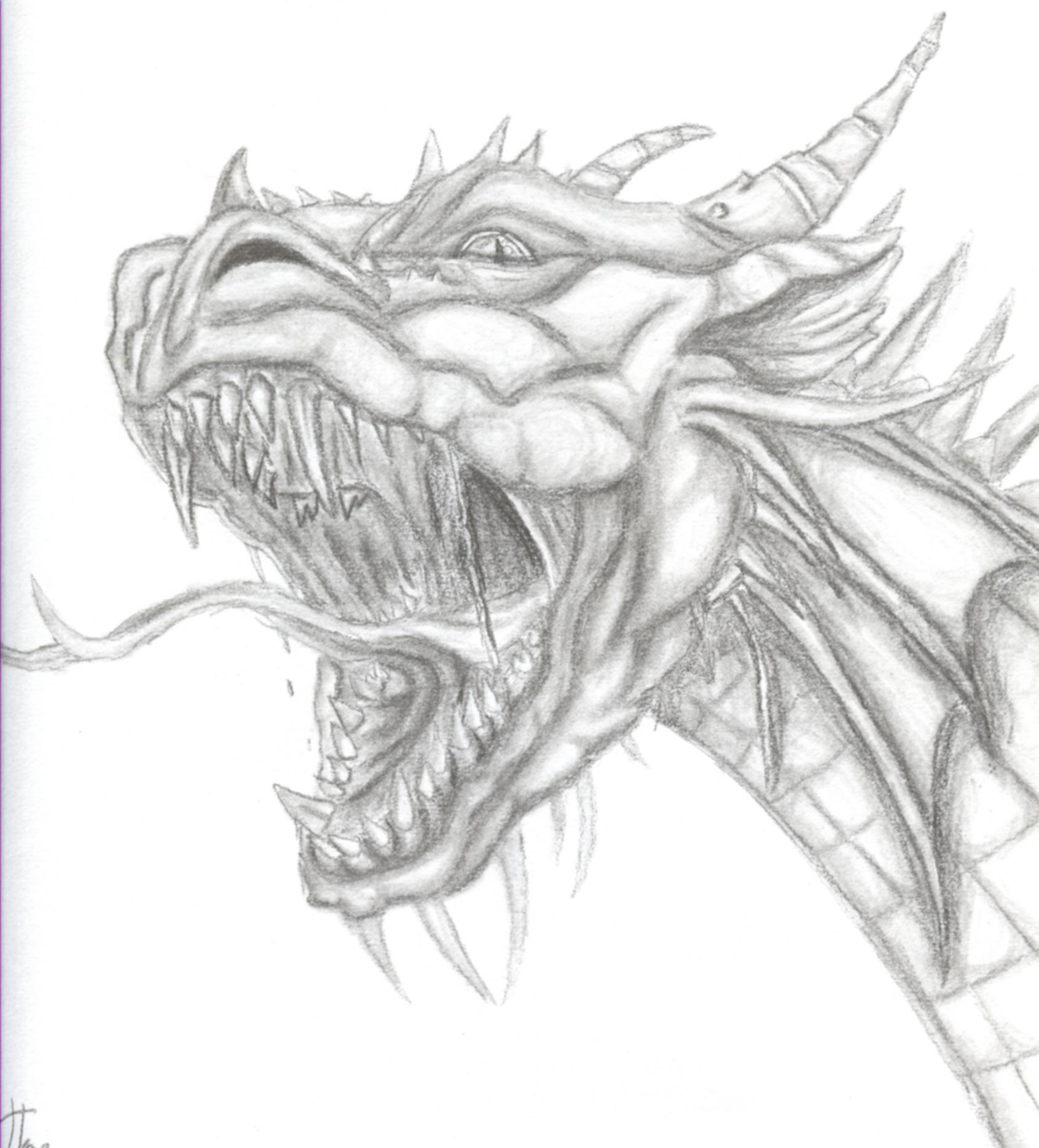 1691x1868 Roaring Dragon By Jenj