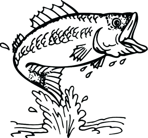 Scary Fish Drawing at GetDrawings.com | Free for personal use Scary ...