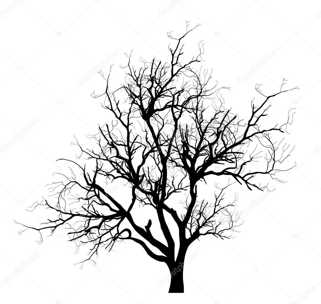 1024x972 Spooky Dead Tree Branches Vector Stock Vector Baavli