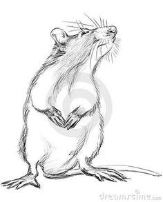 236x293 Rat Drawings In Pencil Of Rat Fantasies And Scenes From Rat Life