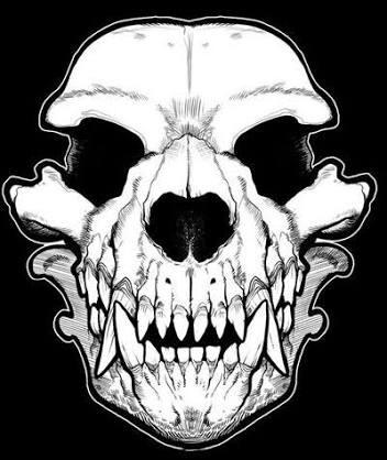 352x418 Wolf Skeleton Draw Spooky Scary Skeleton Skeletons
