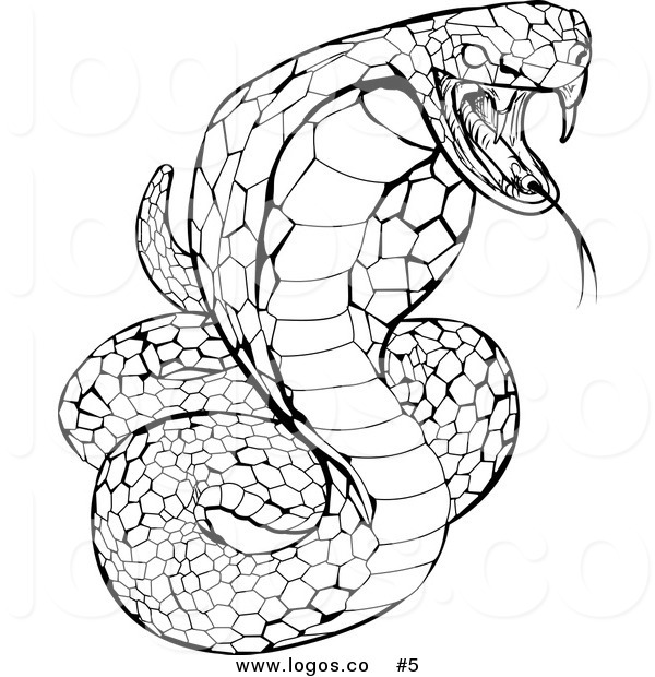 600x620 Spitting Cobra Coloring Pages