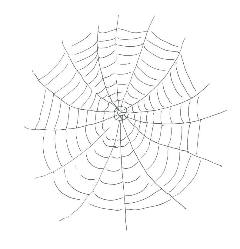 792x822 Scary Spider With Web Coloring Page Color Halloween Pages Murs
