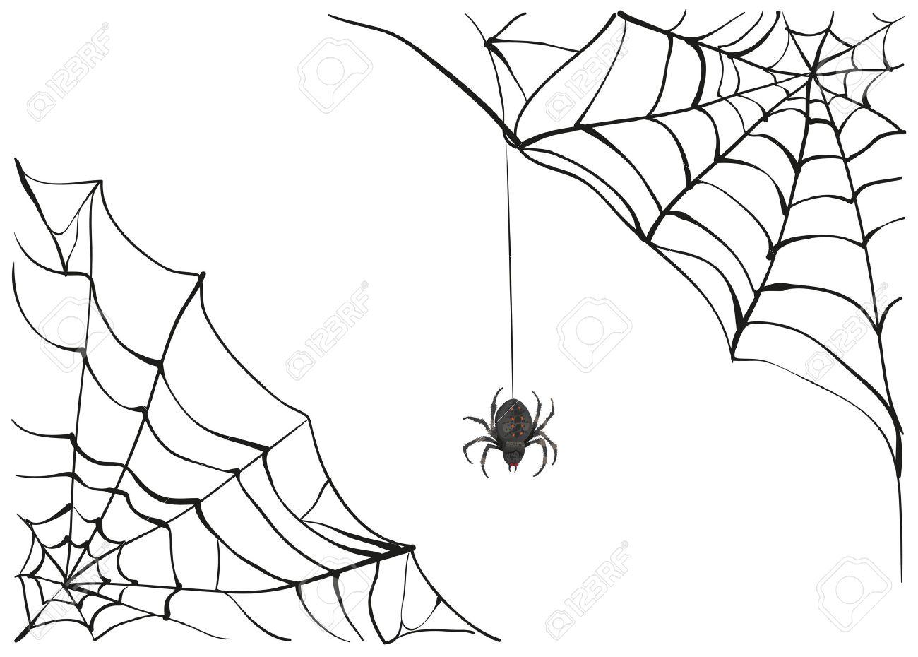 1300x930 Spiderweb. Big Black Spider Web. Black Scary Spider Of Web. Poison