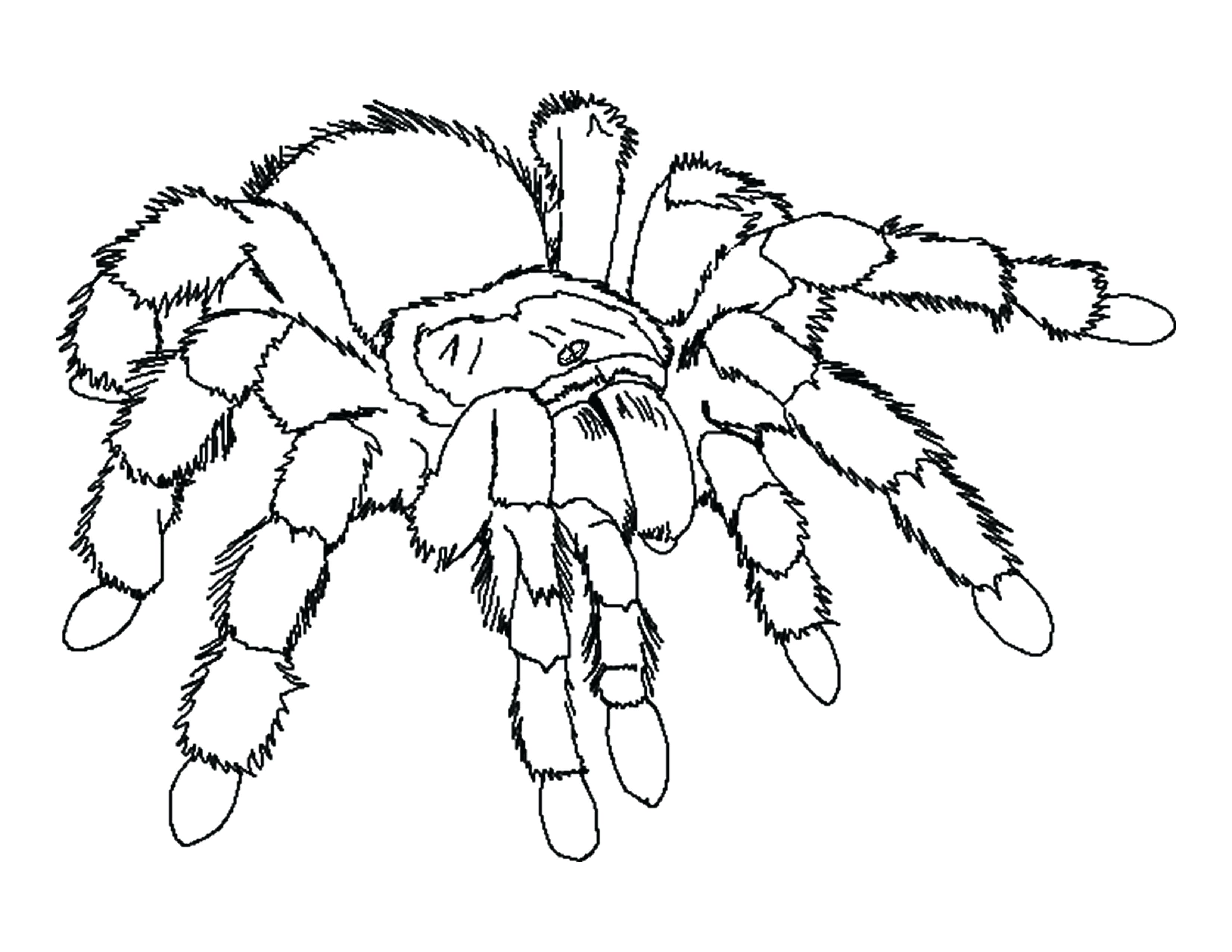 3300x2550 Coloring Halloween Scary Coloring Pages