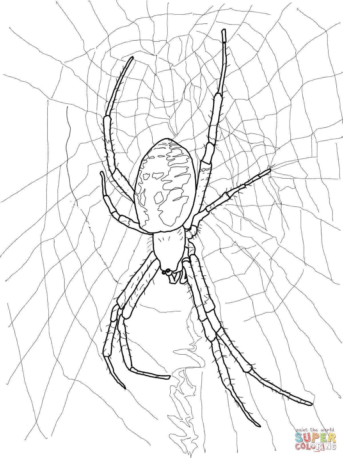 1200x1600 Black And Yellow Garden Spider Coloring Page Free Printable
