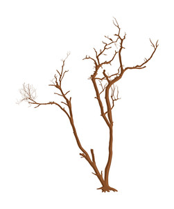251x300 Scary Tree Royalty Free Stock Image