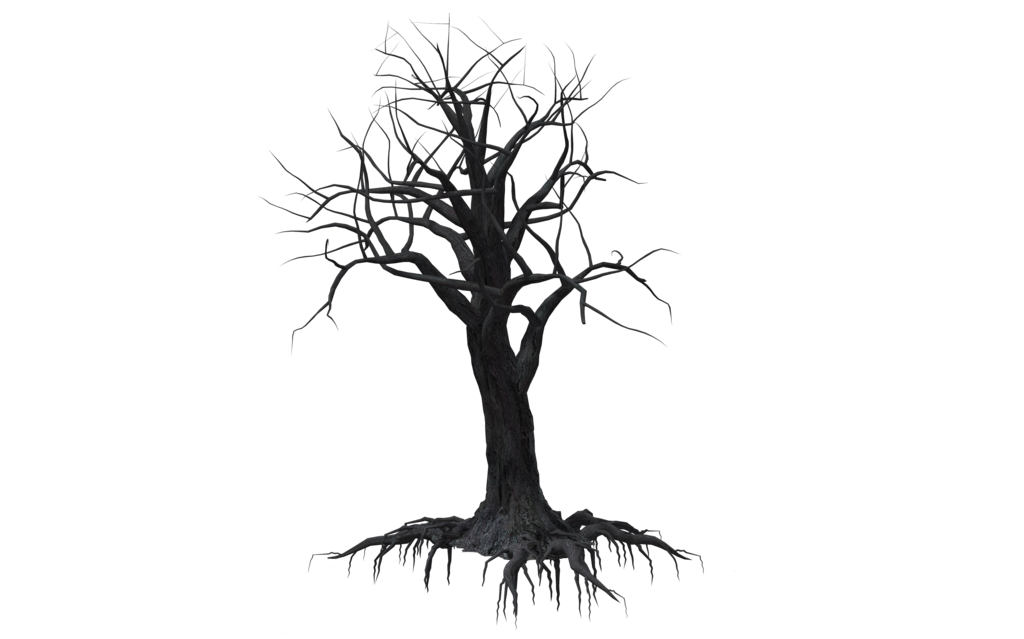 1024x639 Creepy Tree 02 By Wolverine041269