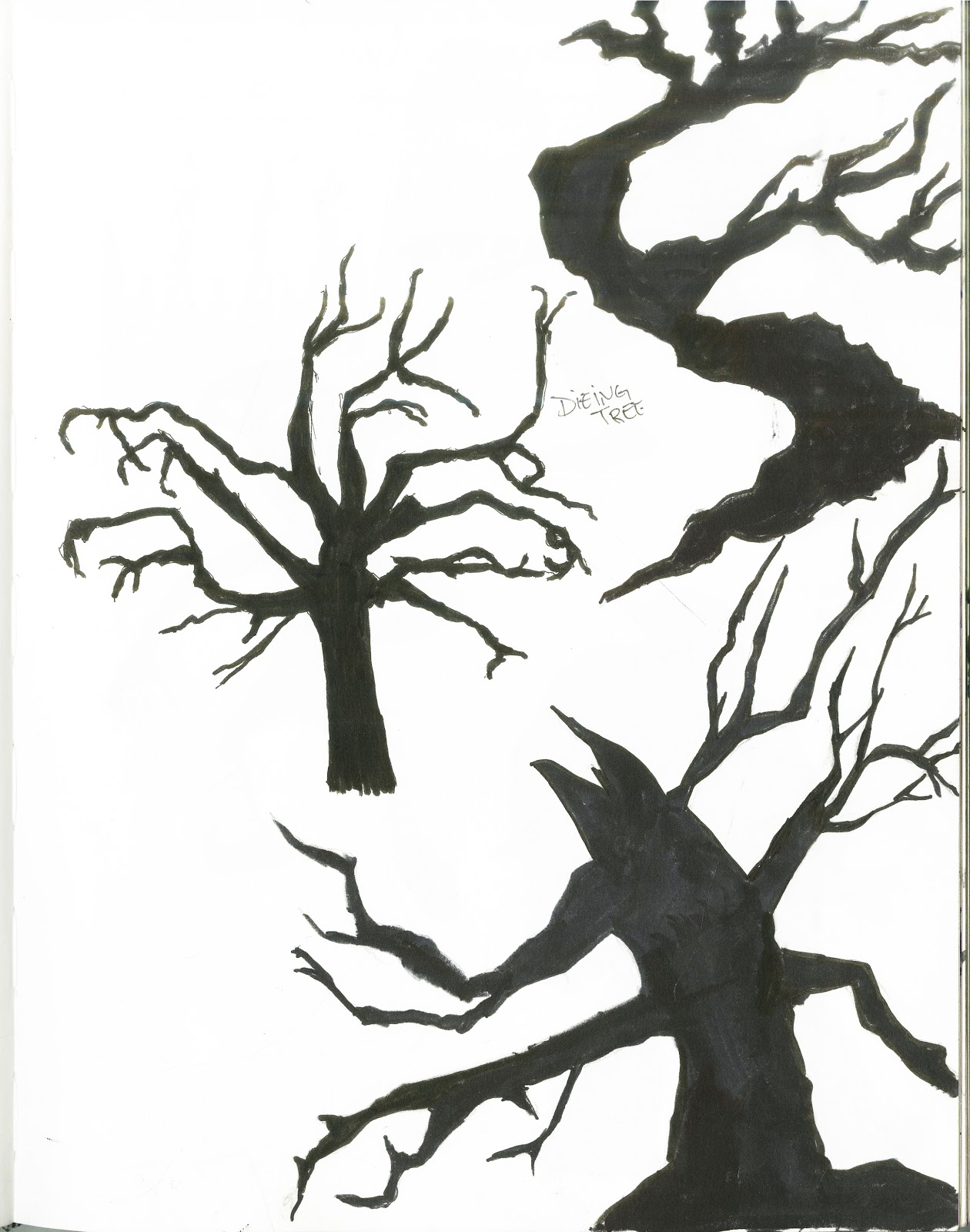 1260x1600 Creepy Tree Drawing Creepy Tree Drawing Scary Tree Pencil Drawing