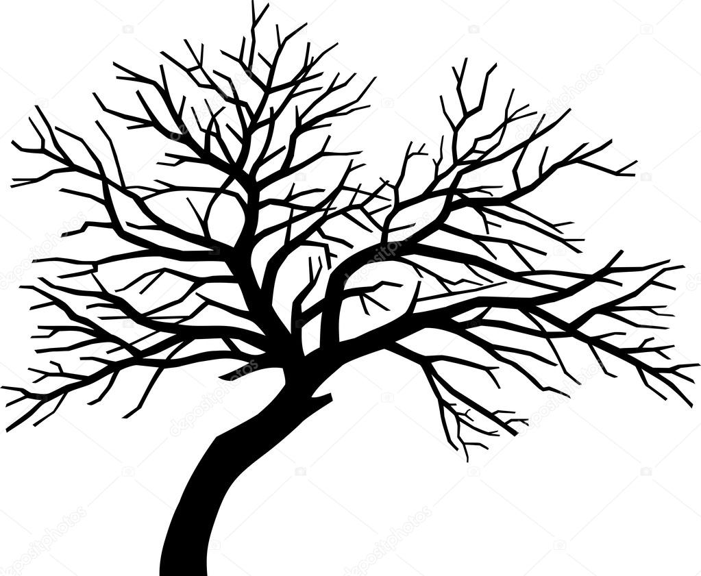 1023x841 Bare Tree Silhouette Images