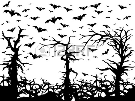 450x338 Black Trees And Bats Scary Background Isolated On White Stock