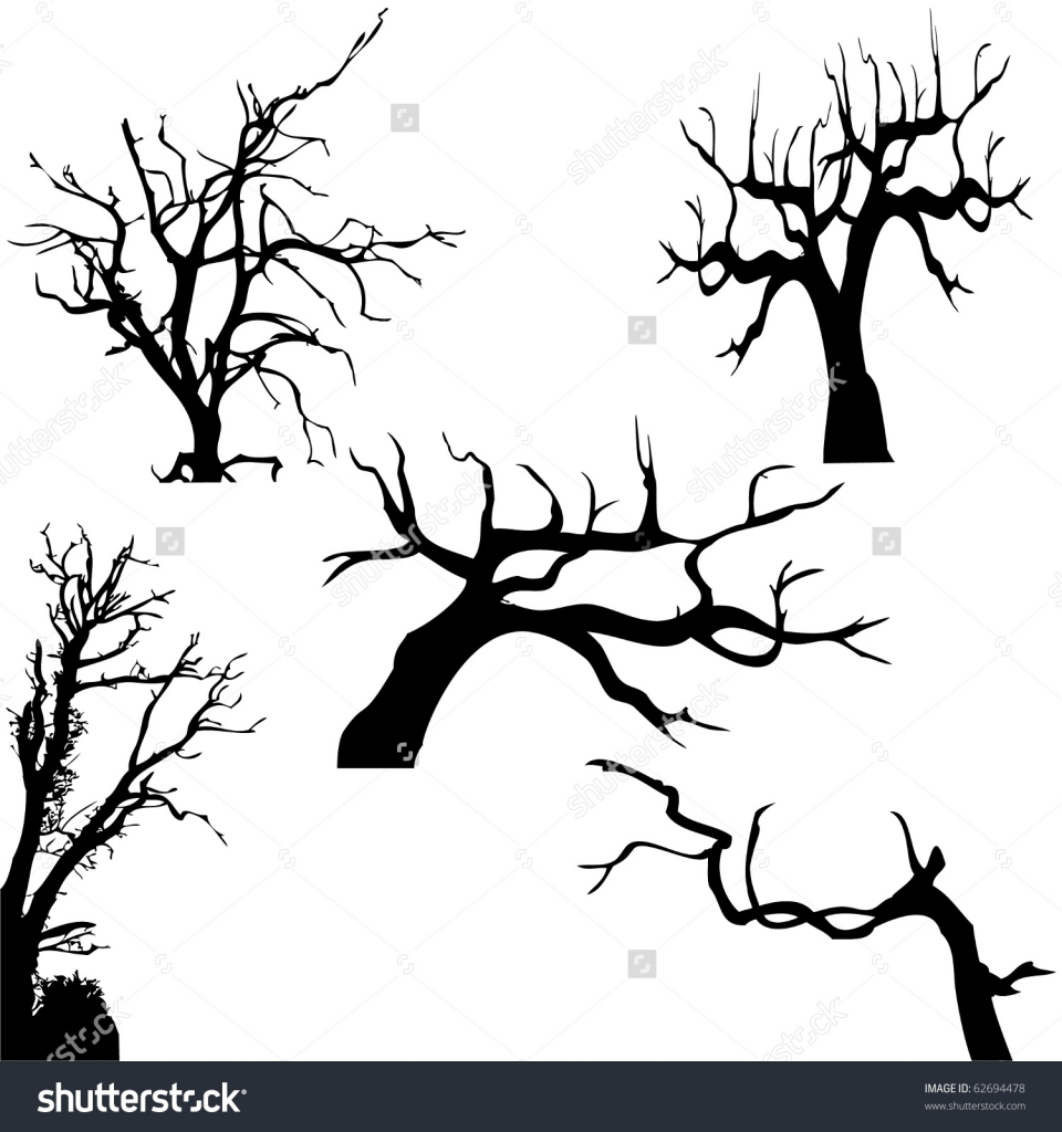 960x1024 Creepy Tree Drawing Spooky Tree Stock Photos Images Amp Pictures