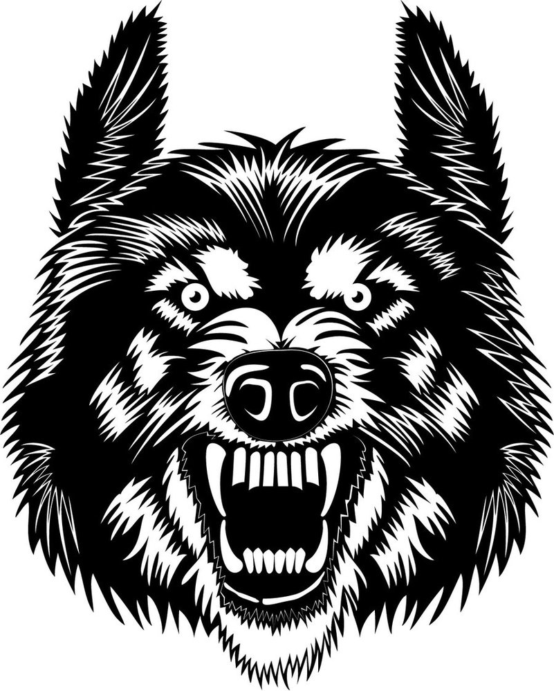 801x998 Wolf Head Vector By Vectorportal