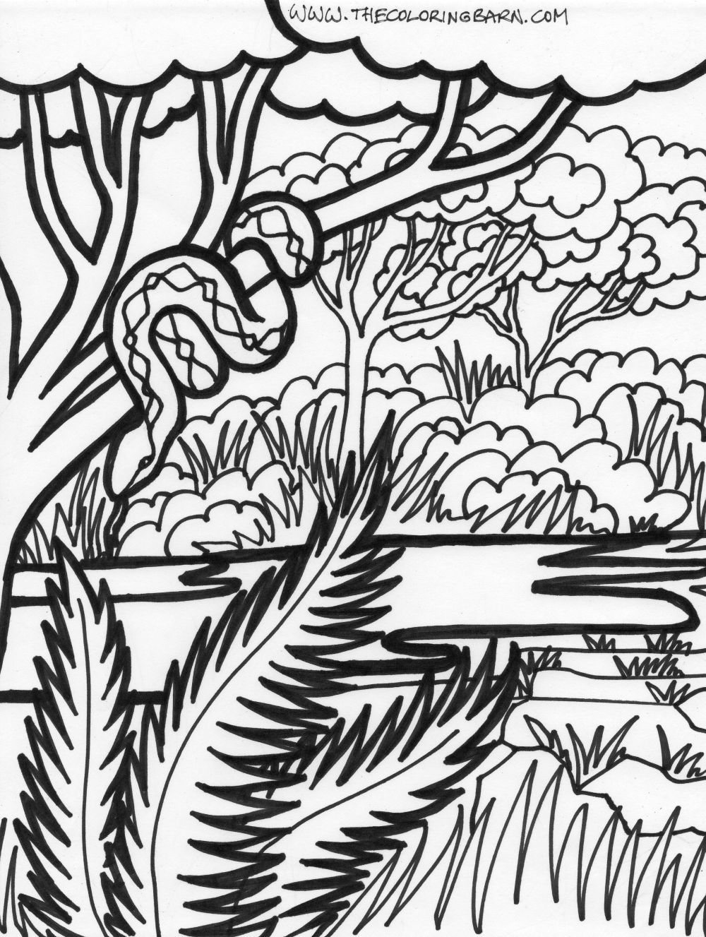1000x1327 Jungle Coloring Sheets Coloring Page Jungle Scene Coloring Page