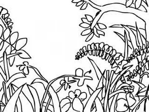 480x360 Drawing A Jungle Scene