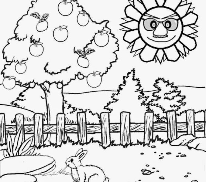 678x600 printable scenery coloring pages kids coloring page