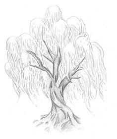 236x281 Oak Tree Drawings With Roots Illustrator's Description Tree