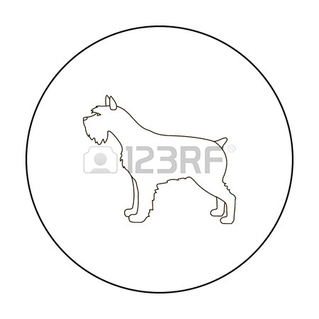 450x450 Schnauzer Vector Stock Photos Amp Pictures. Royalty Free Schnauzer