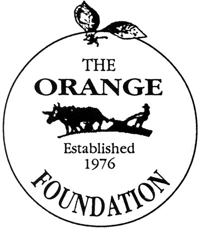 400x459 Orange Foundation 2015 Scholarships Amp Grants Orange Town News