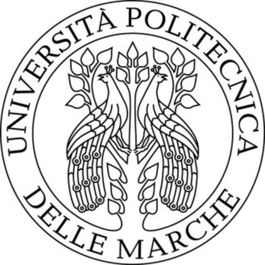 546x546 Scholarships Marche Polytechnic University, Italy Scholarship