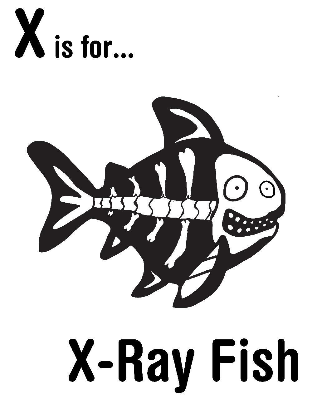 1000x1294 X Is For X Ray Fish Alphabet Crafts Alphabet