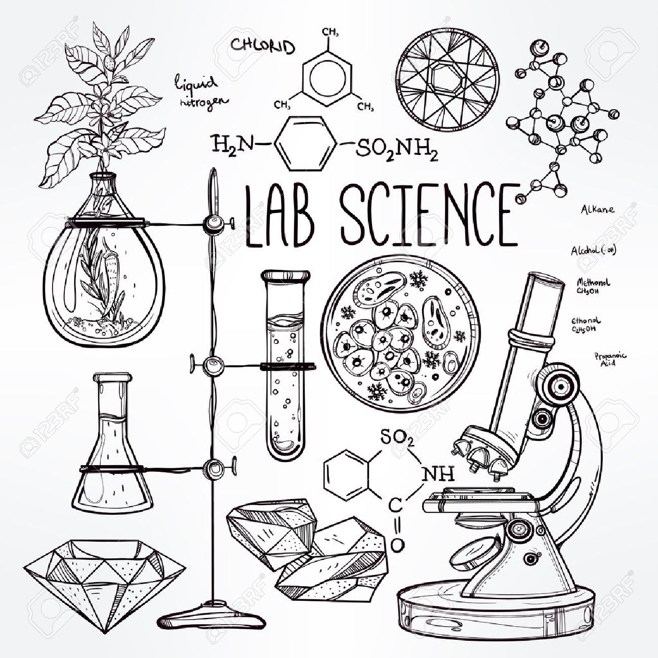 1300x1300 Hand Drawn Science Beautiful Vintage Lab Icons Sketch Set Vector