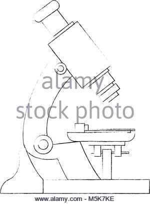 300x406 Laboratory Microscope Sketch Stock Vector Art Amp Illustration