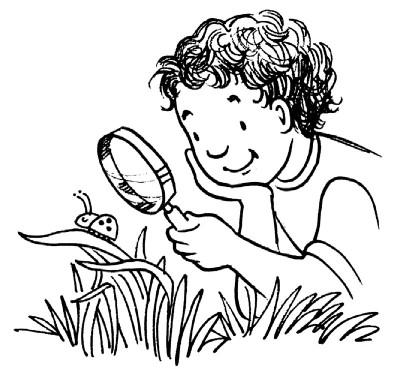 400x369 Easy Outdoor Science Activities For Kids Activities, Easy