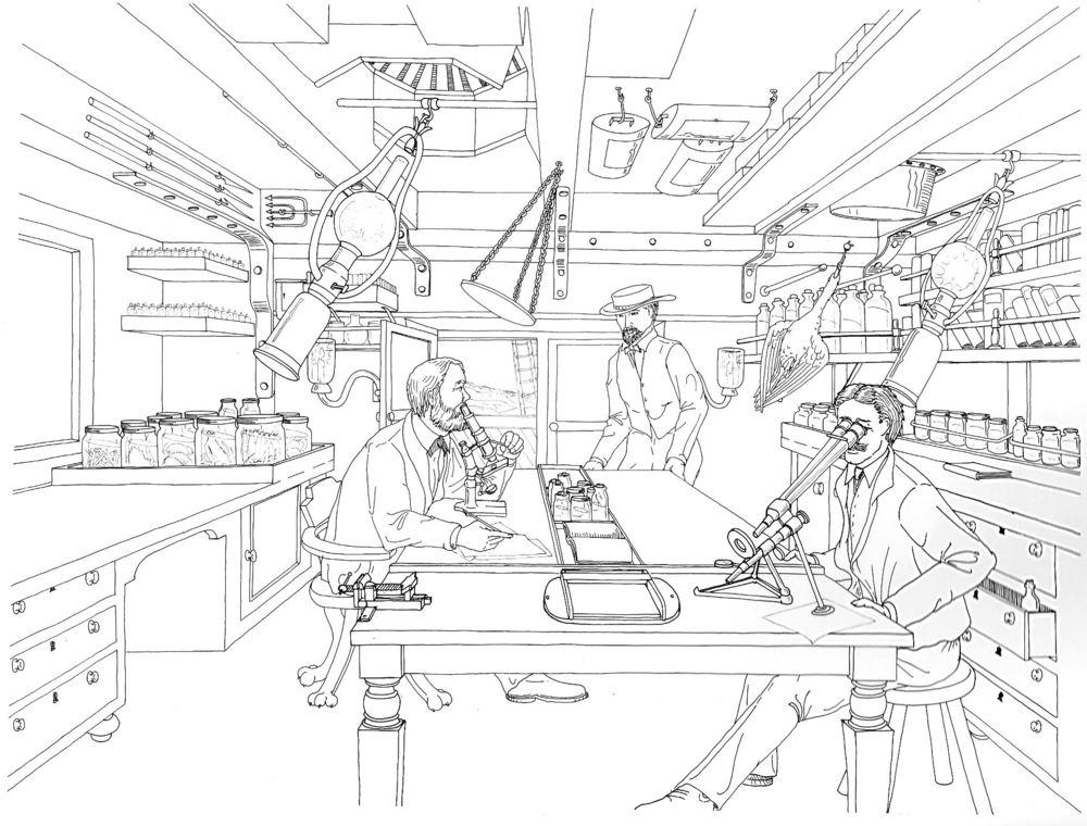 1000x760 Illustrations Charles G Messing