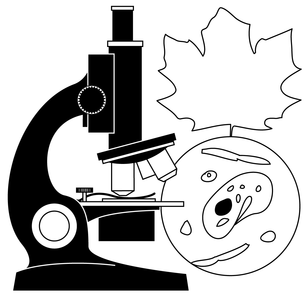 1200x1200 Science Clipart Nature