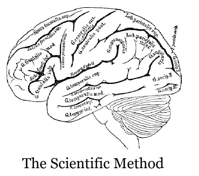 658x585 Everyone Knows That The Scientific Method Is The Key To Doing