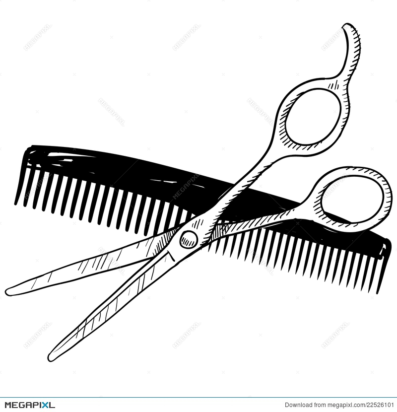 800x830 Barber Tools Sketch Illustration 22526101