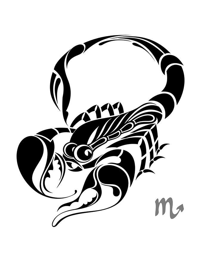 678x850 Scorpion And Scorpio Tattoo Pictures Lovetoknow
