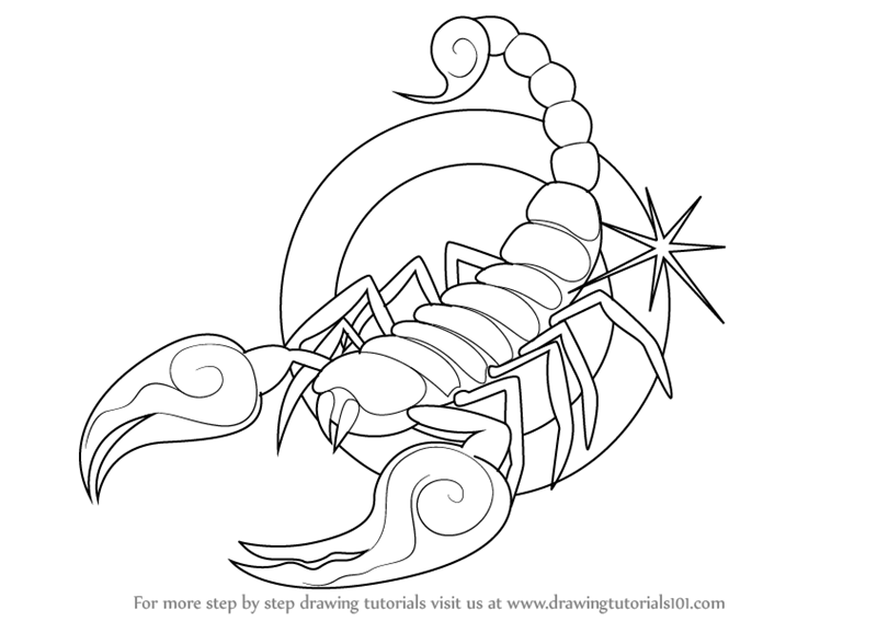 800x567 Learn How To Draw Scorpio Zodiac Sign (Zodiac Signs) Step By Step